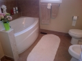 after-picture-3-bathroom-reno-new-tub-new-tile-work-for-tub-and-floor-new-toilet-and-bidet